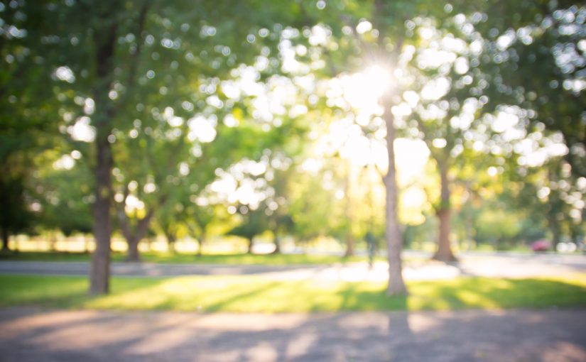 Regra Sunny 16: A Exposição da Luz do dia nas Fotos